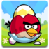 Angry Birds Seasons for Windows Icon