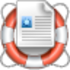 Office DocumentsRescue Professional Icon
