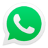 WhatsApp Windows Icon
