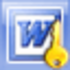 Word Password Recovery Icon