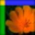 XPicture Icon