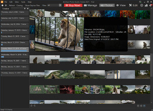 ACDSee 9 Photo Manager Screenshot