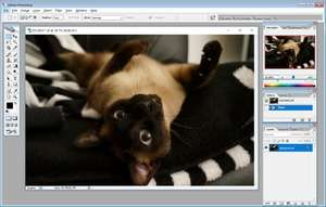 Image Editor - Screenshot for Adobe Photoshop 9 CS2