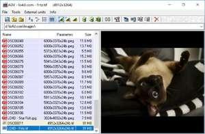 Advanced Viewer Screenshot