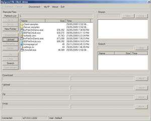 Programming Tools - Screenshot for BIGSPEED Peer-to-Peer SDK