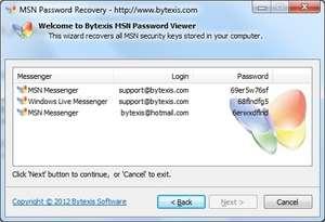 MSN Live Password Recovery Screenshot