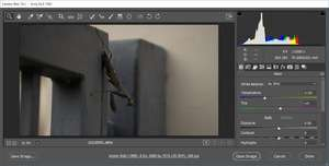 Camera Raw for Photoshop Screenshot