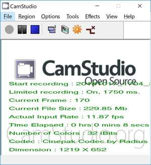 Video Capture Software - Screenshot for CamStudio