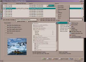 FileName Pro Screenshot
