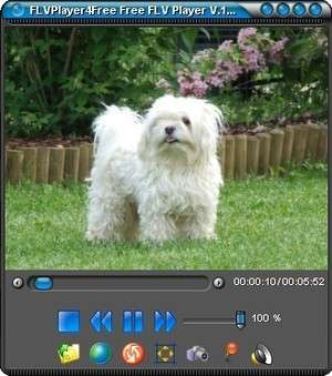 Video Players - Screenshot for FLVPlayer4Free
