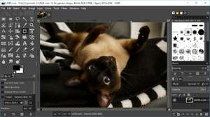 Image Editor - Screenshot for GIMP for Windows