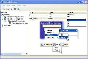 IE AutoFill Screenshot