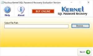 Kernel SQL Password Recovery Screenshot