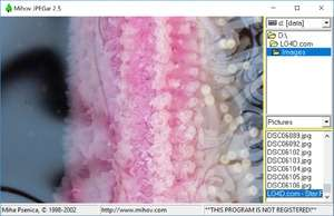 Mihov JPEGar Screenshot