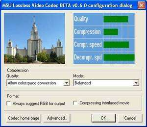 MSU Lossless Video Codec Screenshot