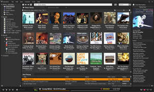 MusicBee Screenshot