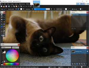 Image Editors - Screenshot for Paint.NET