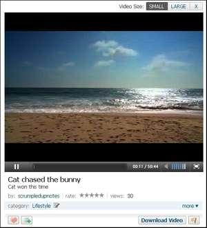 Veoh Web Player Screenshot
