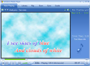 VividLyrics Screenshot