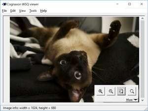 WSQ viewer Screenshot