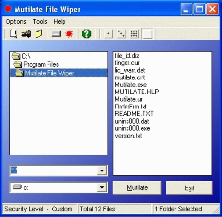 File Downloads